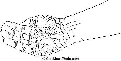 gedetailleerd, hand, lijnen, het bedelen, illustratie, vector, black , witte