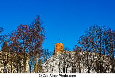 gediminas, ciudad, viejo, vilnius, pueblo, vista, lituania, ...