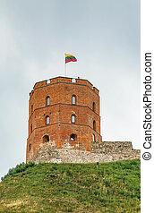 gediminas', vilnius, lituania, torre