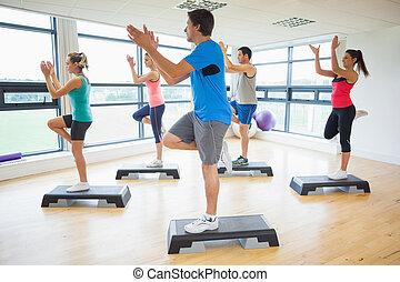 gedresseerd, stap aerobics, fitness instructeur, stand,...