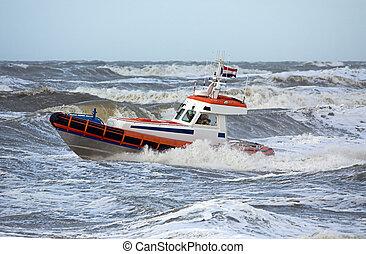 gedurende, conducteur, storm, kust