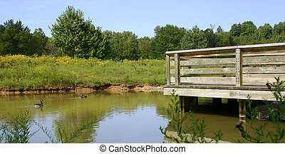 Geese and bridge