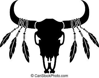 gefieder, stier, amerikanische , gebürtig, kuh, illustration), totenschädel, (vector, oder