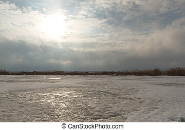 gefrorenes, lake., riede