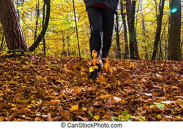 gehen, draußen, laufen, spaziergang, bewegung, person,...
