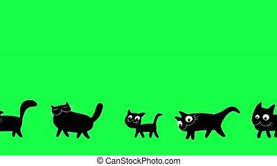 gehen, karikatur, schwarz, katzen, animation.