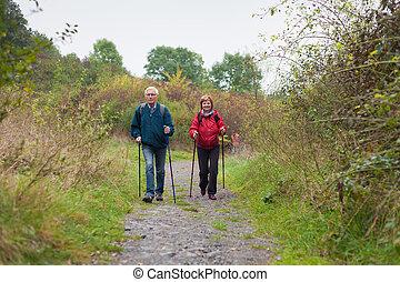 gehen, natur, paar, spur, nordisch, älter