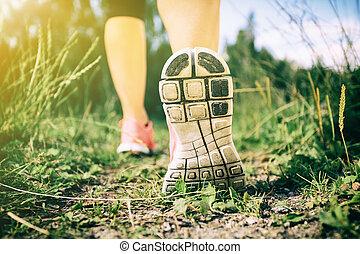 gehen, oder, rennender , beine, in, wald, abenteuer, und, trainieren
