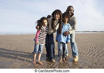 gehen, sandstrand, winter, familie