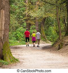gehen, wälder, familie