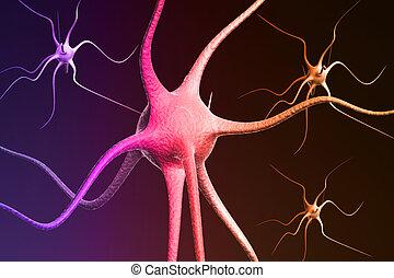 gehirn, nahaufnahme, neuron, render