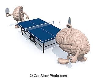 gehirne, tennis, arme, zwei, hälfte, tisch, beine, spielende...