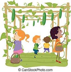 geitjes, stickman, illustratie, prieel, bonen, oogsten