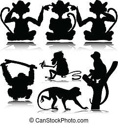 gekke , aap, vector, silhouettes