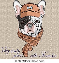 gekke , bulldog, ras, dog, franse , vector, hipster, spotprent