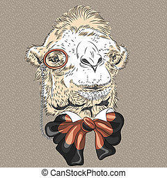 gekke , kameel, vector, closeup, verticaal, hipster