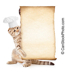gekke , menu, kat, kok, vasthouden, hoedje, perkament