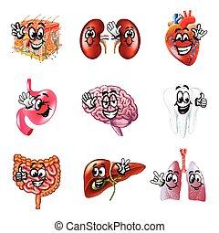 gekke , set, iconen, vector, menselijk, organen, spotprent