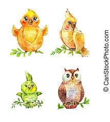 gekke , weinig; niet zo(veel), vrijstaand, watercolor, white., vogels