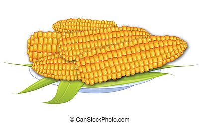 gekookte maïs