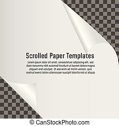 gekrulde, papier, pagina, leeg, hoek, shadow.