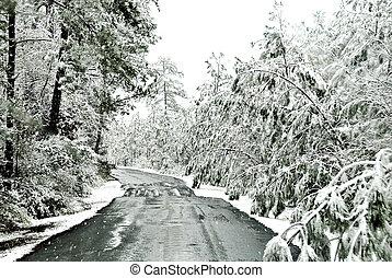 gelado, estrada