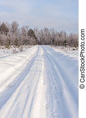 gelado, inverno, estrada, dia