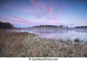 gelado, outono, amanhecer, sobre, selvagem, lago