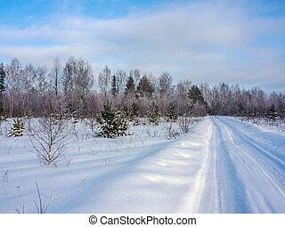 gelado, paisagem inverno, dia