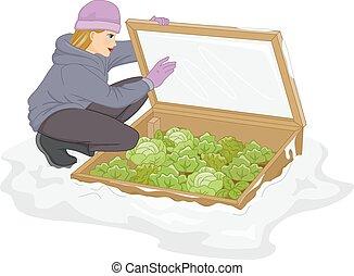 gelado, quadro, plantas