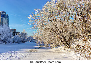 gelado, rio, inverno, dia