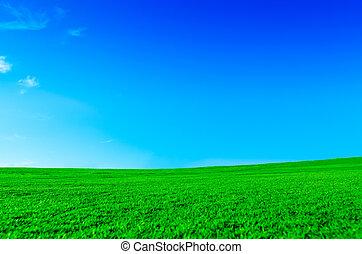 gelassen, grün, landschaftsbild