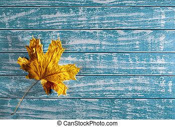gelbes ahornholzblatt, auf, a, hintergrund, von, altes , holz