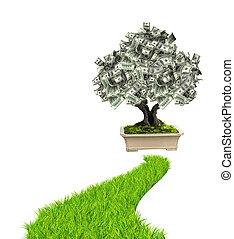 geld baum, dollar, banknoten, grünes gras, straße