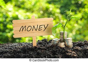 geld, begriff, investition, retten