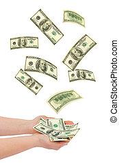 geld, fallender , hand