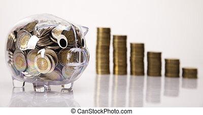 geld, geldmünzen, schwein, bank, steigend