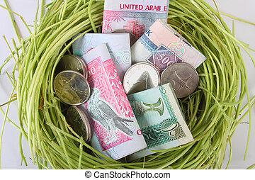 geld, nest, uae, dirhams