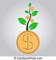 geldbetrieb, geschäftswachstum, begriff, dollar, pflanze