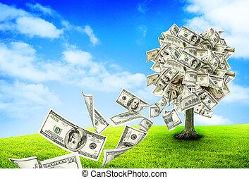 geldboom