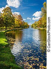 gele bladeren, in, de, herfst, park, dichtbij, rivier