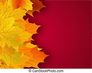 gele, dalingsbladeren, op, een, rood, achtergrond.