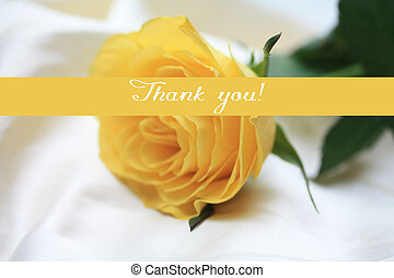 gele roos, kaart, -, afdrukken, en, post, -, bedankt