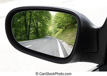 geleider, auto, rearview, bos, spiegel, straat, aanzicht