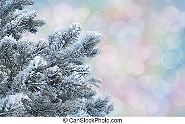 gelido, pino, ramoscelli, contro, astratto, pastello, bokeh, fondo