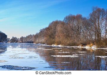 gelo, banca, fiume, albero