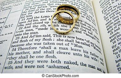 gelofte, twee, rings., boek, trouwfeest, scheppingsboek,...
