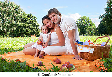 gelukkige familie, picnicking, in het park