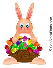 gelukkige pasen, bunny konijn, vasthouden, een, mand, van, kleurrijke, tulpen, bloemen, illustratie, vrijstaand, op wit, achtergrond