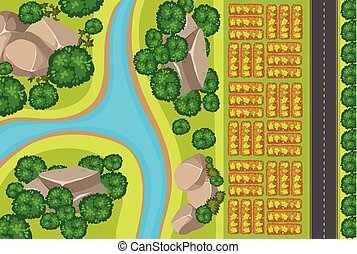 gemüse, luftaufnahmen, kleingarten, ansicht